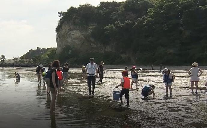 親子で学ぶ松島湾の海辺